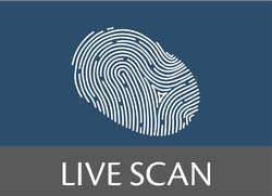 Live Scan
