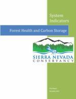 System Indicators: Forest Health & Carbon Storage
