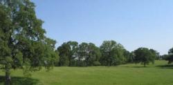 Oaks Rangeland