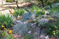 Rock gardening.