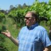 Doug in Vineyard