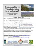 Angora Flyer