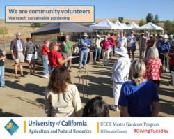 UCCE Master Gardeners Community Volunteers