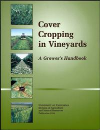 Cover Crops in Vineyards